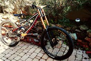 specialized status 1 dh freeride  2013