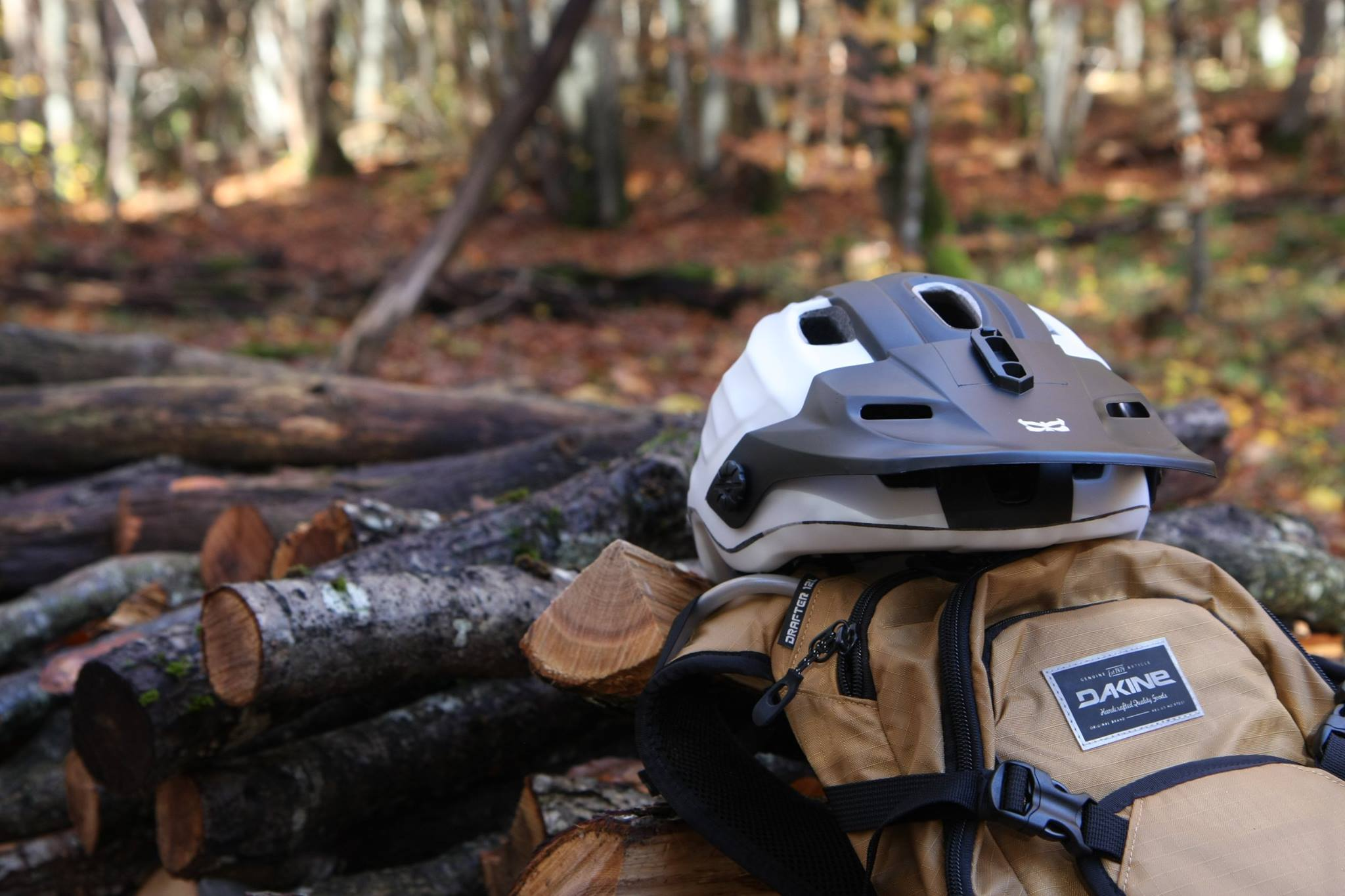 Trail Buddies - Présentation