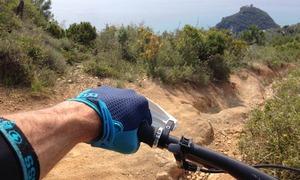 Position sur le cintre avec des leviers avid elixir trail