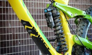 Performance Shock Spring Bearing