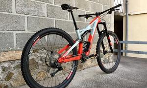 Enduro Pro Carbon 29/6Fattie