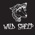 Wildsheep