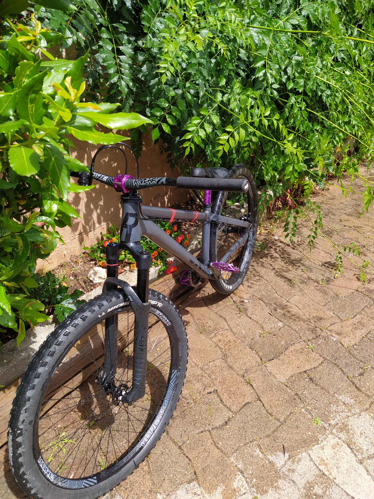 Rose Bikes the bruce