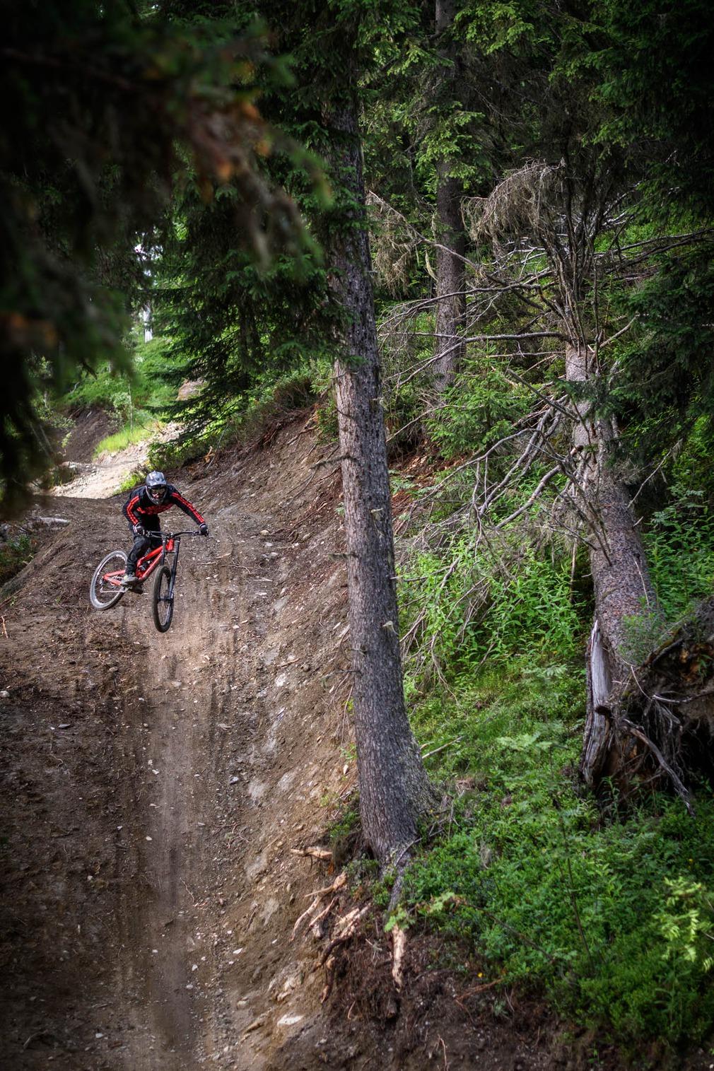 Jump en forêt