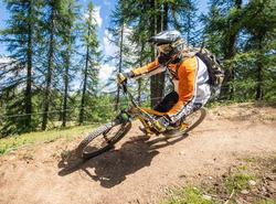 Bike park amp Vtt  preview (3)