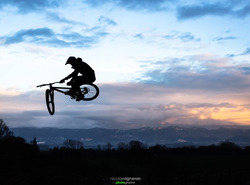 T Bog @Nicolas Vigneron Photography