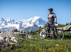 VTT Vue Mont Blanc©Nico Secerov