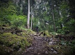 Beaufortain trail